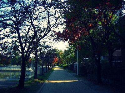 CIMG4691.jpg_effected.png