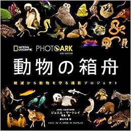 動物の箱舟.jpg