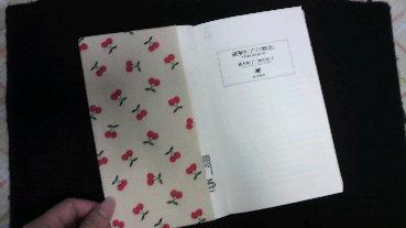 bookcover4.jpg