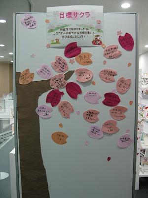 目標桜.jpg