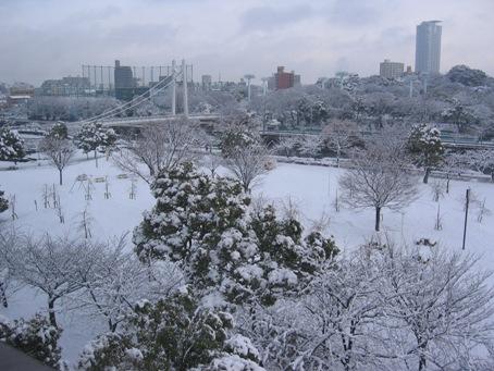 20110117風景s.jpg
