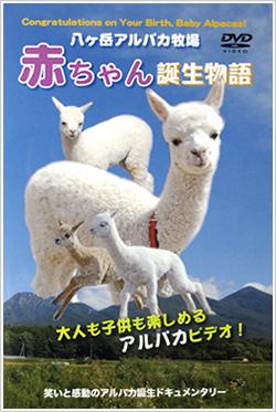 alpaca-dvd-01.jpg