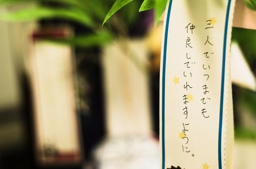 _DSC0001s.JPG