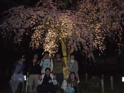 yozakura8.jpg
